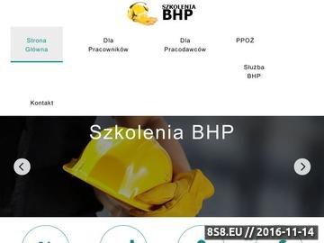 Zrzut strony Okresowe i wstępne szkolenia bhp dla pracowników i pracodawców