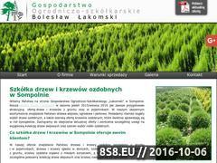 Miniaturka domeny www.szkolka-lakomski.pl
