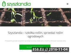 Miniaturka domeny www.szyszlandia.pl