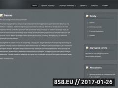 Miniaturka domeny www.tanie-kominki-kominy.pl