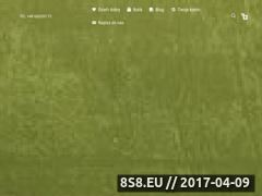 Miniaturka domeny tchaya.pl