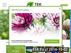 Miniaturka domeny www.tekpolska.pl