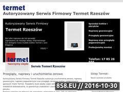 Miniaturka domeny termet-rzeszow.pl