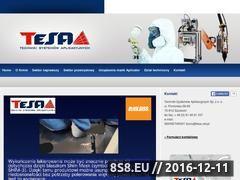 Miniaturka domeny tesa.net.pl