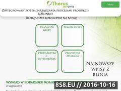 Miniaturka domeny thorus.pl