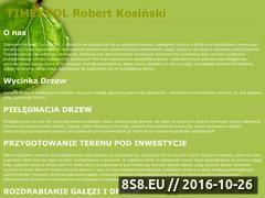 Miniaturka domeny timexpol.com.pl