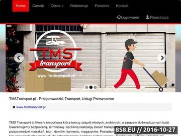 Zrzut strony TMSTransport oferuje przeprowadzki, transport