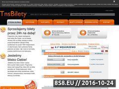 Miniaturka domeny www.tnsbilety.pl