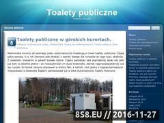 Miniaturka domeny toalety-publiczne.net
