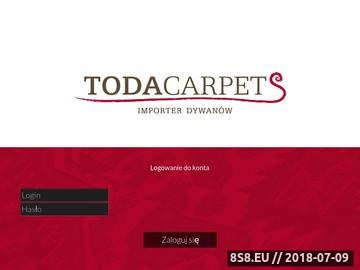 Zrzut strony Dywany dla dzieci - hurtownia dywanów Toda Carpets