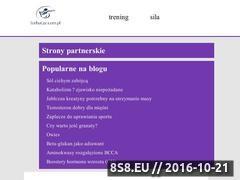 Miniaturka domeny torbacze.com.pl