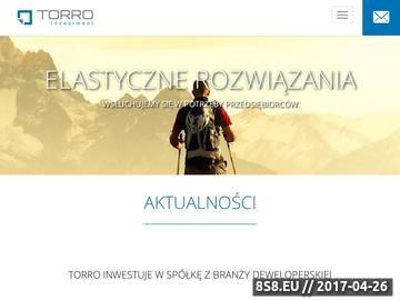 Zrzut strony Torro Investment