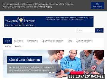 Zrzut strony Systemowe rozwiązania szkoleniowe dla biznesu