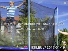 Miniaturka domeny trampolina-z-siatka.pl