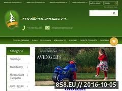 Miniaturka domeny www.trampolinowo.pl