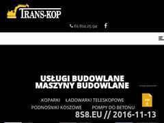 Miniaturka domeny www.trans-kop.pl
