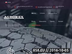Miniaturka domeny transportagromex.pl