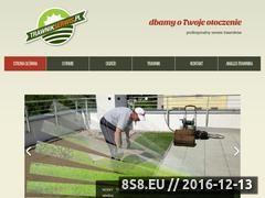 Miniaturka domeny www.trawnikserwis.pl
