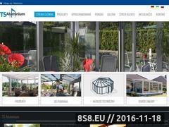 Miniaturka domeny www.ts-alu.pl