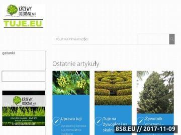 Zrzut strony Tuje.eu - blog o zywotnikach
