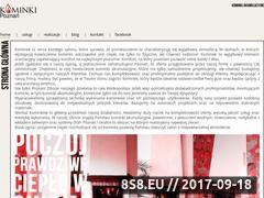 Miniaturka domeny www.twoj-kominek.eu
