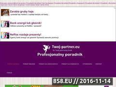 Miniaturka domeny twoj-partner.eu