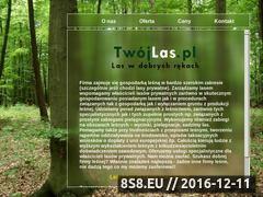Miniaturka domeny twojlas.pl