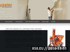 Miniaturka domeny www.tynkefekt.pl