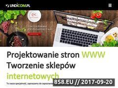 Miniaturka domeny undicom.pl
