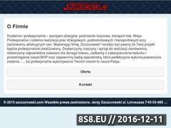 Miniaturka domeny www.uslugi-dzwigowe.net