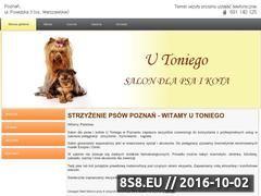 Miniaturka domeny utoniego.pl