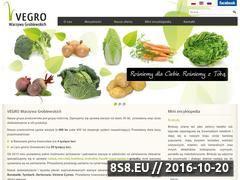 Miniaturka domeny www.vegro.pl