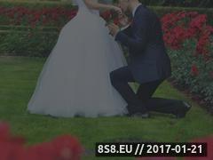 Miniaturka domeny videotf.pl