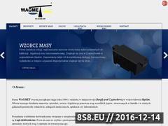 Miniaturka domeny wagmet.pl