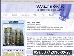 Miniaturka domeny waltronik.com
