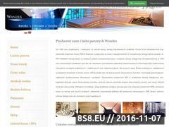 Miniaturka domeny www.wandex.com.pl