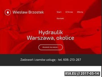 Zrzut strony Hydraulik - Warszawa