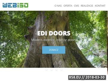 Zrzut strony Projektowanie stron www Kraków