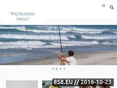 Miniaturka domeny wedkarskiswiat.com.pl