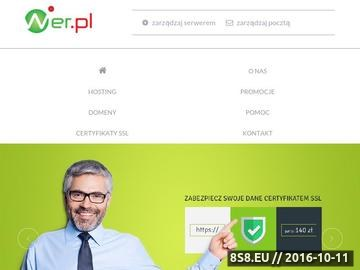 Zrzut strony Wer hosting WWW
