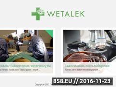 Miniaturka domeny www.wetalek.pl