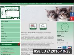 Miniaturka domeny weterynarz-szczecin.info