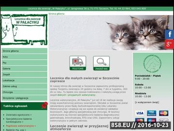 Zrzut strony W Pałacyku - leczenie kotów Szczecin