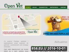 Miniaturka domeny www.weterynarzkety.pl