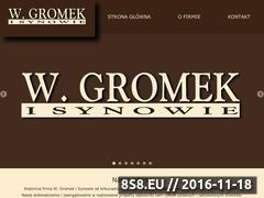 Miniaturka domeny wgromek.pl