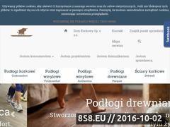 Miniaturka domeny www.wicanders.pl