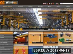 Miniaturka domeny windexholding.pl