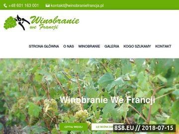 Zrzut strony Winobranie Francja