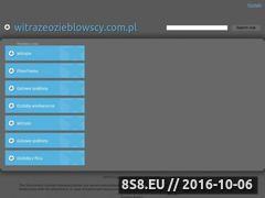 Miniaturka domeny www.witrazeozieblowscy.com.pl
