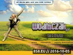 Miniaturka domeny wodniczak.pl